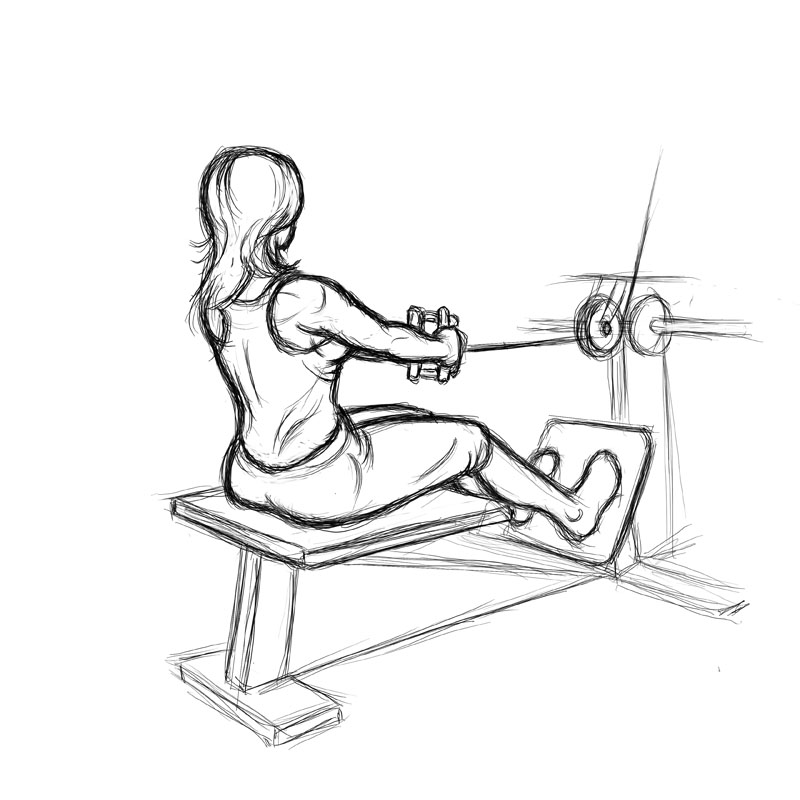 Seated Calf Raise Without Machine Illustration of women ...