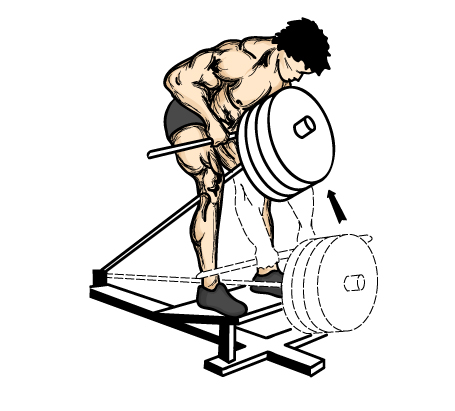 Illustration Of A Good Back Workout Exercise For Men