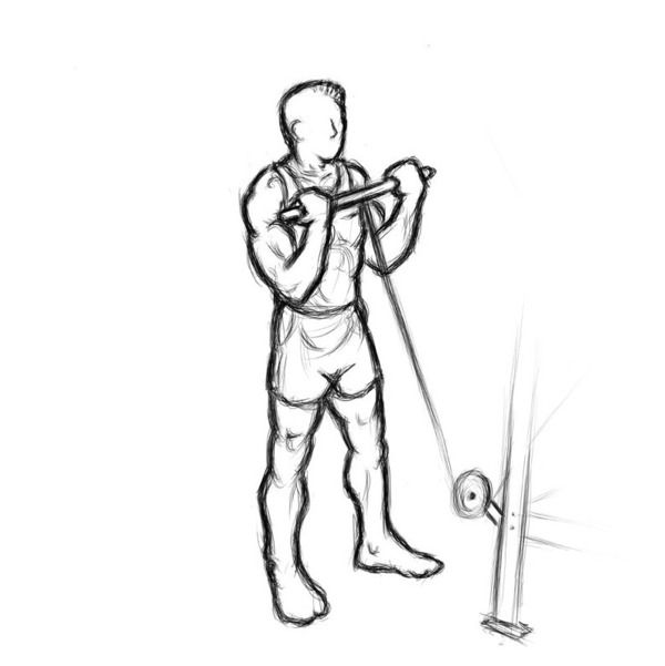 Illustration of male doing a good bicep workout routine.