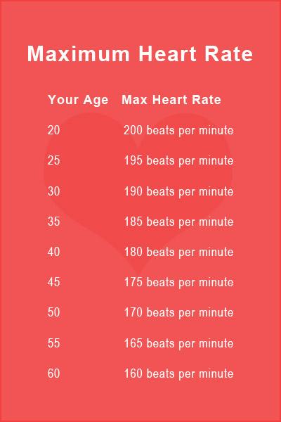 Printable Heart Rate Charts