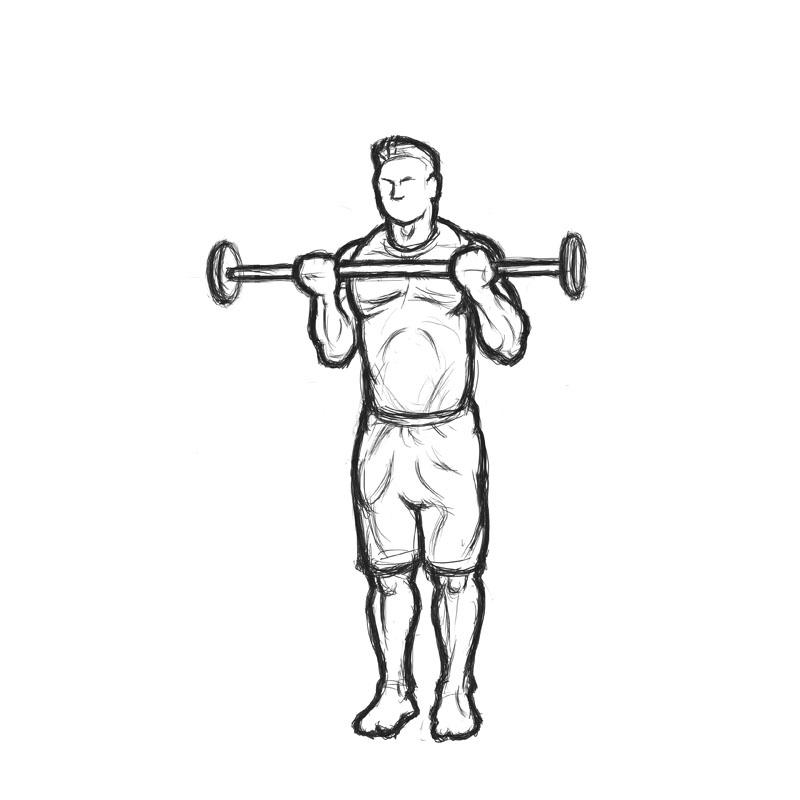 Dumbbell Biceps Curl Reverse