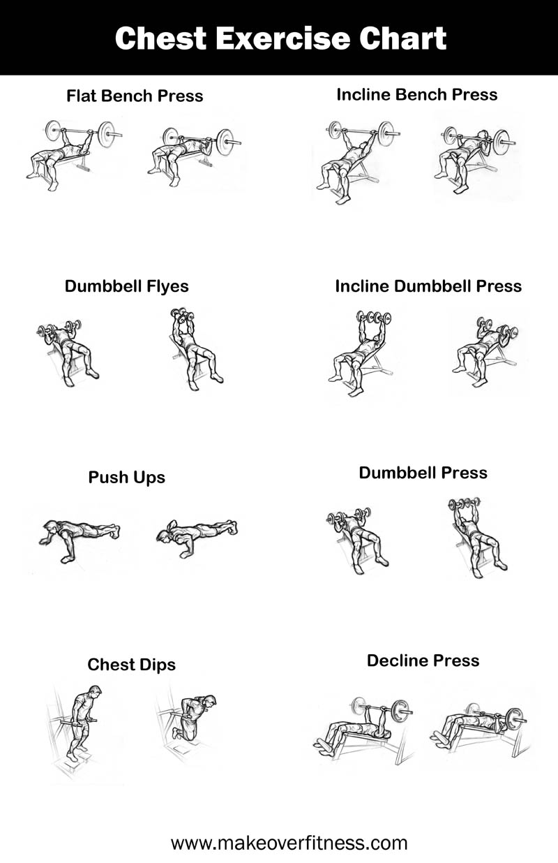 Free chest exercise chart you can print