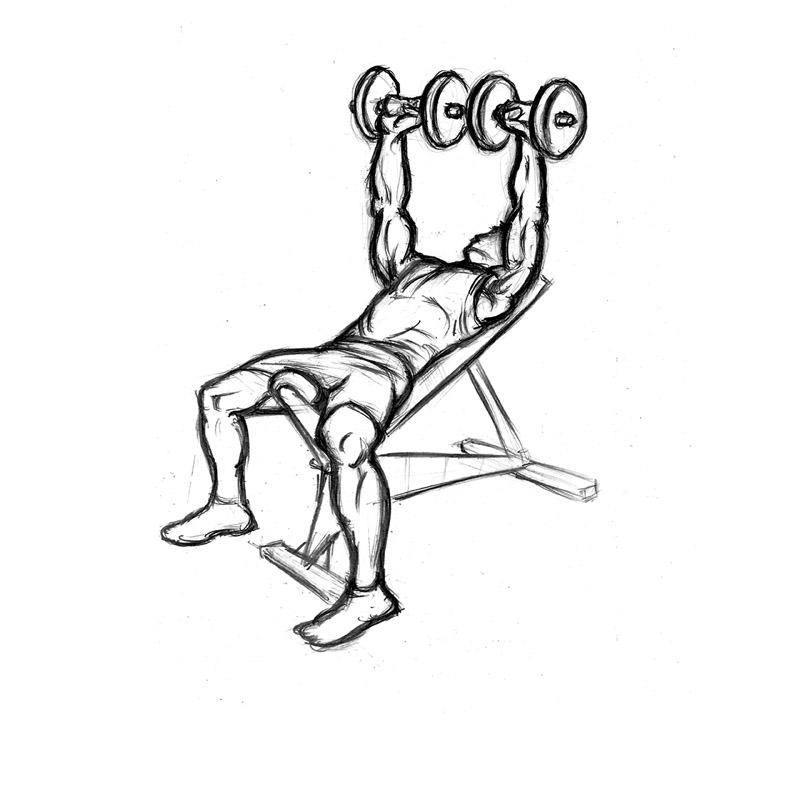 Incline Dumbbell Press | Chest Exercise with Bench
