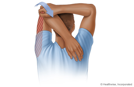 Tricep Stretches | Good Stretching Exercise