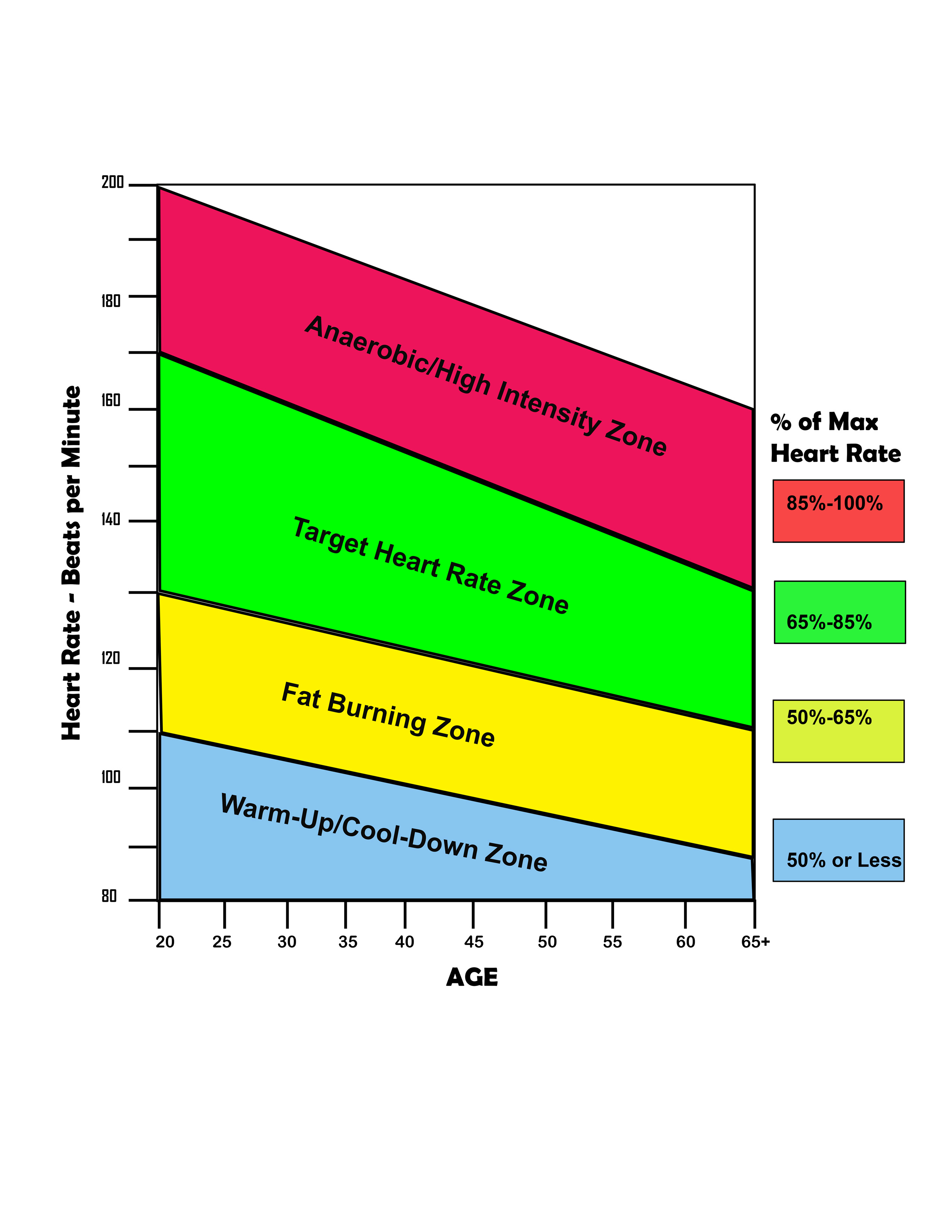 Essay On Target Heart Rate Personal Trainingcalculate The